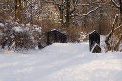 De sneeuw behandelde weinig brug in de winterpark Royalty-vrije Stock Fotografie