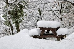 De sneeuw behandelt alles Stock Fotografie