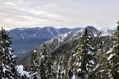 De sneeuw behandelt bergen Royalty-vrije Stock Foto's