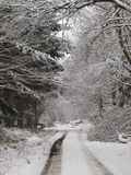 De sneeuw behandelt het platteland Royalty-vrije Stock Foto's
