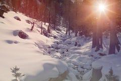 De sneeuw bevroren rivierkreek in bos de Winterhout met sneeuw bij zonsondergang of de zonsopgang met warme lichte zon flakkert Stock Fotografie