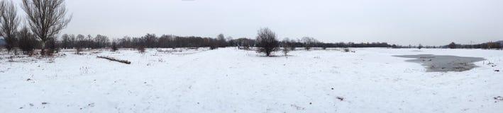 De sneeuw eijsderbeemden Royalty-vrije Stock Foto