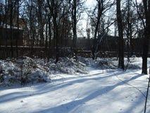 De sneeuw ligt op de grond onder de bomen in het park Royalty-vrije Stock Foto's