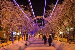 De sneeuw ligt op de takken van bomen na een Blizzard in zonlicht royalty-vrije stock afbeelding