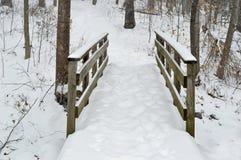 De sneeuw overbrugt te voet Stock Foto's