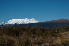 De sneeuw pieken van Nieuwe Zealands zetten Ruapehu op. Royalty-vrije Stock Foto