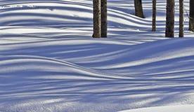 De sneeuw stelt 01 in de schaduw Stock Afbeeldingen