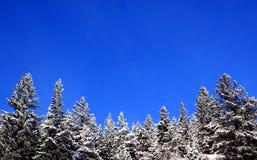 De Sneeuw van de berg Stock Afbeeldingen