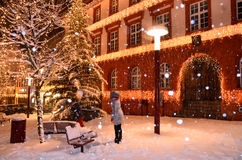 De Sneeuw van de Tribergwinter Royalty-vrije Stock Afbeeldingen