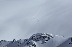 De sneeuw van het poeder het skiån royalty-vrije stock foto's