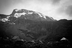 De sneeuw van Kilimanjaro Stock Fotografie