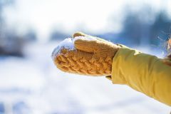 De sneeuw van de vrouwenholding in handen op de winterdag stock foto