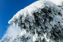 De sneeuw winter in bergen Stock Fotografie