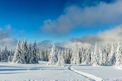 De sneeuw winter in bergen Royalty-vrije Stock Fotografie