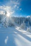 De sneeuw winter in bergen Stock Afbeeldingen
