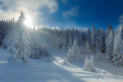 De sneeuw winter in bergen Royalty-vrije Stock Foto's