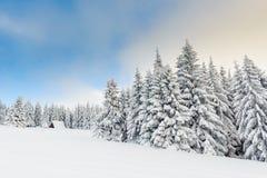 De sneeuw winter in bergen Stock Foto