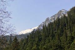 De Sneeuwbergen, Jiuzhaigou Stock Foto