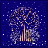 De sneeuwbomen van de winter in de sneeuwval Royalty-vrije Stock Foto