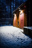 De sneeuwbouw bij nacht in het hout royalty-vrije stock foto