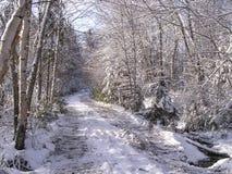 De sneeuwdalingen van november stock afbeelding