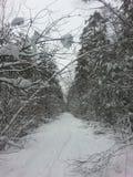 De sneeuwgoed van het de winterweer wite Royalty-vrije Stock Foto