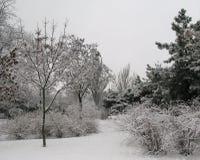 De sneeuwlandschap van de winter royalty-vrije stock afbeeldingen