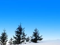 De sneeuwscène van de winter Royalty-vrije Stock Foto