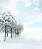 De sneeuwscène van de winterkerstmis Stock Foto's