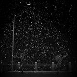 De sneeuwval van de nacht in straallicht van straatlantaarn. Stock Fotografie