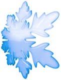 De sneeuwvlok van de winter Stock Fotografie