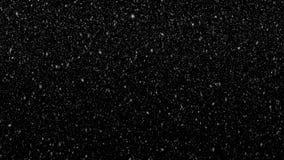 De sneeuwvlokken bewegen slordig op zwarte achtergrond stock video