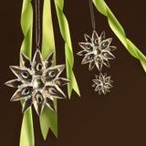De sneeuwvlokken van het kristal met groene linten Royalty-vrije Stock Afbeeldingen