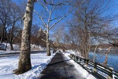 De SneeuwWeg van het Central Park Stock Afbeelding