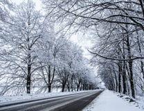 De sneeuwweg van het land. royalty-vrije stock foto's