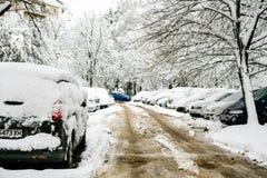 De sneeuwwinter stock foto's