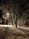 De sneeuwwinter fabelachtige stemming sneeuw stock afbeeldingen