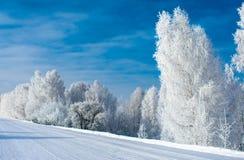 De sneeuwwinter in Siberi? stock fotografie