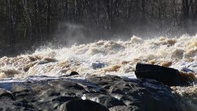 De snel bewegende stroomversnelling van St Louis River in Minnesota stock video