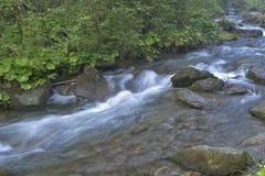 De snelle bergrivier loopt tussen reusachtige rotsachtige stenen Stock Afbeeldingen