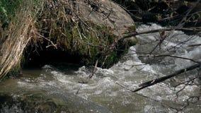 De Snelle Stroom van de Rivier dichtbij de Steen stock videobeelden
