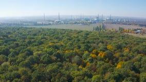 De snelle vlucht over het de herfstbos in de afstand u kan een bedrijf zien stock videobeelden