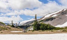 De snow-covered Regenachtigere flanken van Onderstel stock foto's