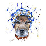 De snuit van de hond in het hoofddeksel wordt gemaakt in de vorm van een wreat Stock Fotografie