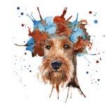 De snuit van de hond in het hoofddeksel wordt gemaakt in de vorm van een wreat Royalty-vrije Stock Foto