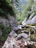  a de SoÄ de rivière Photo libre de droits