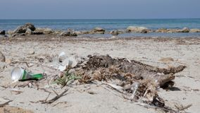 De soda kan en afval op het zandige strand behangen Overzees op de achtergrond Langzame Motie stock video