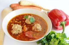 De soep en de groenten van het vleesballetje royalty-vrije stock afbeeldingen