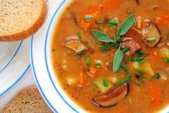 De soep van de aardappel - close-up Royalty-vrije Stock Foto's