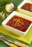 De soep van de borsjt Stock Afbeelding